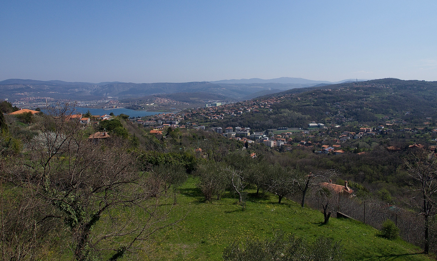 View from the hilltop